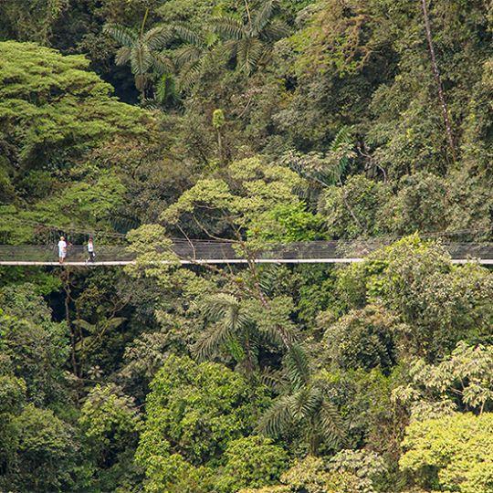 aremal-volcano-hanging Bridges Mistico