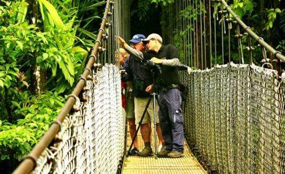 Arenal Volcano Hanging Bridges Tour